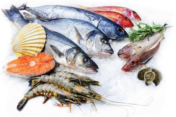 Bảo quản cá tươi đúng cách