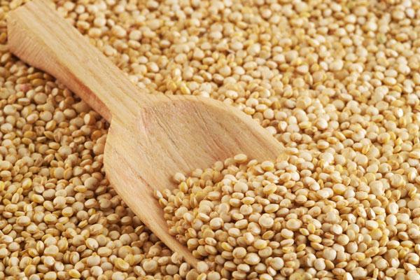 Quinoa hay còn gọi là diêm mạch