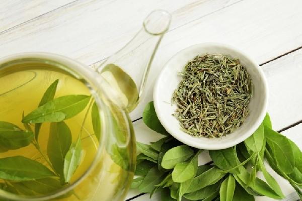 Tập thói quen uống trà xanh
