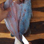 Học cách phi lê cá chẽm