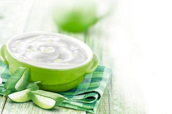 Cách ủ sữa chua nha đam